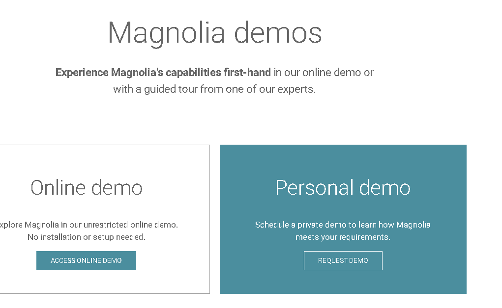 Screenshot Magnolia-Website